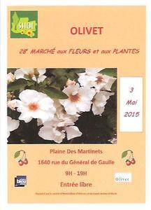 28e Marché aux fleurs - Olivet - Mai 2015
