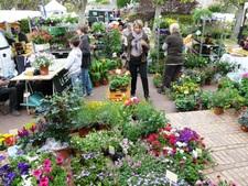 Marché aux fleurs du terroir et de l'artisanat - Grisy-les-Platres - Avril 2015