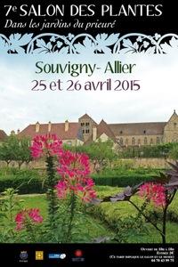 7ème salon des plantes au Jardin du prieuré - Musée de Souvigny  - Avril 2015