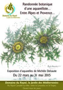 Randonnée botanique d'une aquarelliste ... Entre Alpes et Provence ... - Rayol-Canadel-sur-Mer - Mars 2015