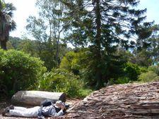 Ateliers & Formations - Photographier la nature