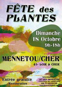 Fête des Plantes dans la Cité Médiévale - Mennetou Sur Cher - Octobre 2015