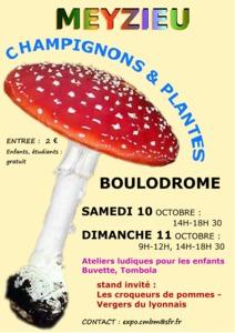 Champignons et plantes - Meyzieu - Octobre 2015