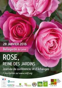 Rose, reine des jardins - Bellegarde du Loiret - Bellegarde du Loiret - Janvier 2016