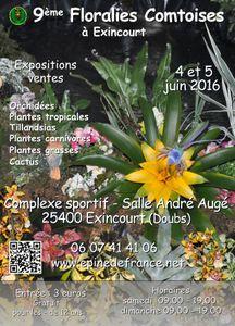 9e Floralies Comtoises : la féerie d'un rêve tropical ! - Exincourt - Juin 2016