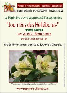 Journées des Hellébores - Xirocourt - Février 2016