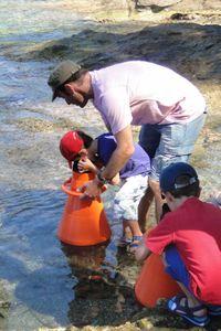 Activité familles : Les pieds dans l'eau au Domaine du Rayol