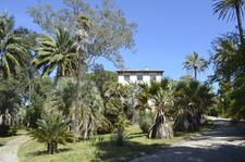 Balades au jardin antibes septembre 2016 for Jardin villa thuret antibes