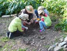 Activités famille : Les mains dans la terre au Domaine du Rayol