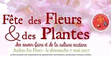 Fête des Fleurs et des Plantes, des Savoir-faire et de la Culture Occitane, « Aubas en Flors »  - Aubas - Mai 2017