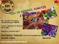 Troc de graines, plantes, fruits et légumes du jardin
