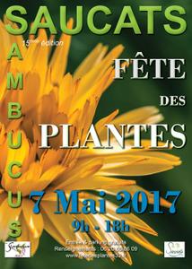 Fête des plantes - Saucats - Mai 2017
