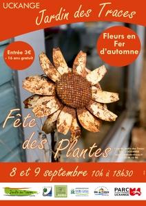 Fête des plantes - Fleur en Fer d'automne