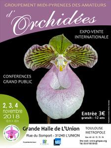 Exposition Internationale d'Orchidées de Toulouse - L'Union - Novembre 2018