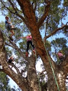 Grimpez dans les arbres - Activités familles - Rayol-Canadel-sur-Mer - Avril 2018