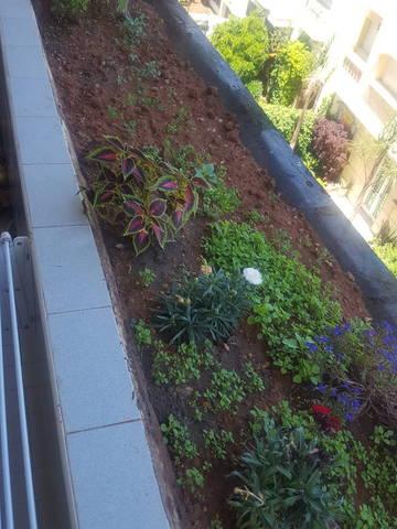 Jardinière au balcon - 28805